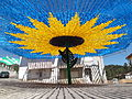 Girassol gigante 2014 em Pereiro de Mação.JPG