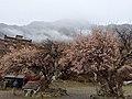 Gongbo'gyamda, Nyingchi, Tibet, China - panoramio (7).jpg