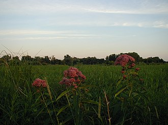 Governor Nelson State Park - Image: Gov Nelson jh 02