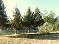 Gramolazzo (Minucciano)-lago5.JPG