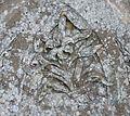 Gravestone symbolism with a lily flower, St Columba's, Stewarton, East Ayrshire.jpg