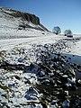 Great Close Scar, Malham Tarn - geograph.org.uk - 135282.jpg