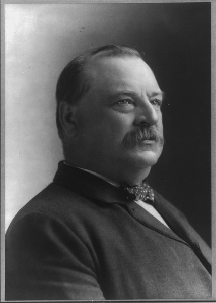 File:Grover Cleveland, 1837-1908, bust portrait, facing right LCCN2006684519.tif