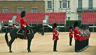 A horse urinating while in formation with the Queens Guards Guards horse having a pee during practicing for trooping the colour (13869294593).jpg