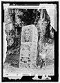 Guatemala. Quirigua stone monument showing headdress LCCN2016821500.jpg