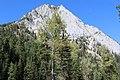 Gunsight Peak, Wallowa-Whitman National Forest (26195911174).jpg