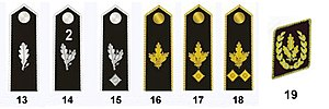 Ranks and insignia of the Hitler Youth - Image: HJ Adult Ranks