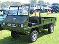 Haflinger green.jpg