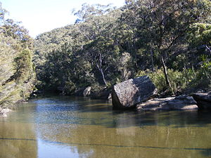 Engadine, New South Wales - Heathcote National Park.