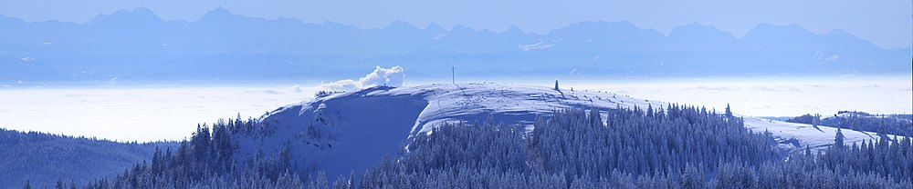Herzogenhorn-mit-Alpenblick.jpg