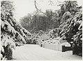 Het Kopje van Bloemendaal in de sneeuw. NL-HlmNHA 54015759.JPG