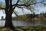 High Park, Toronto DSC 0192 (17206147630).jpg