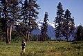 Hiker in North Cascades, 1972 (47297669052).jpg