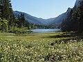 Hintersee (See), vom Zauberwald aus gesehen.JPG