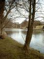 Holstebro park.JPG