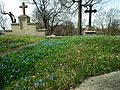 Holy Cross Cemetery in Gniezno PL (23).JPG