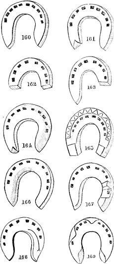 Horse shoes and horse shoeing-124.jpg
