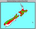 Hymenolaimus malacorhynchos distribution.PNG