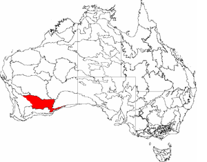Coolgardie (biogeographic region) - The IBRA regions, with Coolgardie in red