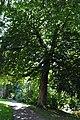 IJsselstein 23-07-2012 10.JPG