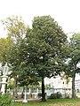 Ihlamur Palace Garden 13.jpg