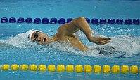 Incheon AsianGames Swimming 19 (15178565298).jpg
