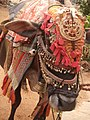 Indian rituals (2).jpg