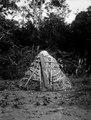 Indianska hönshus. Rio Sambú, Darién, Panamá. Etnisk grupp, Emperá-Chocó. Rio Sambu. Panama - SMVK - 003969.tif