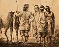 Indios Pampas (Serie) - Ibarra Carlos Morel (cultivo) .jpg