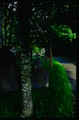 Inner Locksbrook Cemetery.Bath.tif