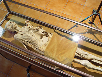 Medical museum - A skeleton in the Iranian National Museum of Medical Sciences, Tehran