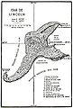 Isla de Lincoln.jpg