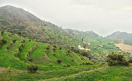 Jabal saber (15963903633) (cropped).jpg