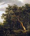 Jacob van Ruisdael - Lichtung in einem Wald.jpg