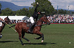 Jaeger-LeCoultre Polo Masters 2013 - 31082013 - Match Legacy vs Jaeger-LeCoultre Veytay for the third place 61.jpg
