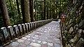 Japan The way to Mt Kurama (15010090463).jpg