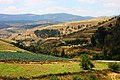 Jarash Nature - panoramio.jpg