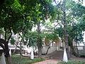 Jardí de la Casa Ignacio de Puig 03.JPG