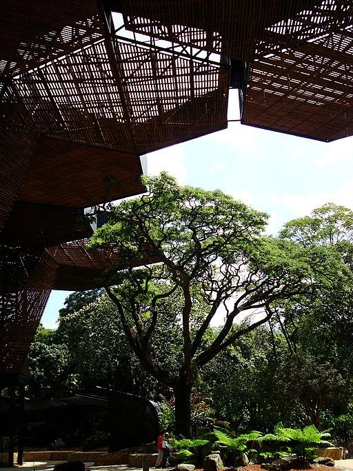 Jardin Botanico Medellin-Orquideorama Museums in Medellin