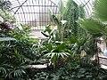 Jardin d'hiver lux1.JPG