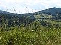 Jeseníky, horní lipová - panoramio.jpg
