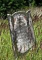 Jewish cemetery Lodz IMGP6502.jpg
