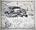 "Johannes Hevelius - Prodromus Astronomia - Volume III ""Firmamentum Sobiescianum, sive uranographia"" - Tavola GG - Virgo.jpg"