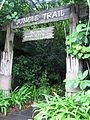 Jungle Trail, Sentosa, Singapore - 20071208.jpg