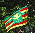 Kanaka Maoli flag.jpg