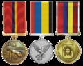 Kapytsia-Medal-3.png
