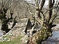 Karpenisi, Greece - panoramio - dims321.jpg