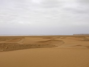 Khenifiss National Park - Sand dunes in the park, with the Atlantic Ocean in the background