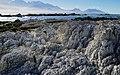 Kiakoura coastline. NZ (48485459596).jpg