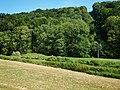 Kirchberg an der Jagst, Germany - panoramio (5).jpg
